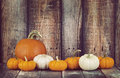 Pie Pumpkin And Mini Pumpkins In A Row Royalty Free Stock Photo - 60462055