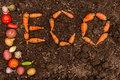 Inscription ECO On The Background Of Fresh Earth And A Group Of Young Vegetables Stock Images - 60493874