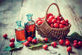 Tincture Bottles Of Hawthorn Berries And Ripe Thorn Apples Stock Images - 60502074