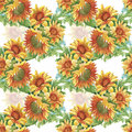 Seamless Pattern With Yellow Sunflowers Painted In Watercolor On A White Background Royalty Free Stock Photo - 60550925