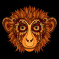 Vector Ornate Monkey Head. Patterned Tribal Colored Design Stock Image - 60560881