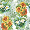 Seamless Pattern With Yellow Sunflowers Painted In Watercolor On A White Background. Stock Photos - 60563743
