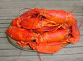 Cooked Lobsters Piled On Plate Stock Photo - 6068130