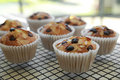 Homemade Apricot Chocolate Chip Almond Slice Muffins Stock Photography - 60605452