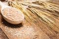 Wheat Bran In Wooden Spoon With Wheat Ears Stock Photography - 60681172