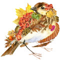 Forest Bird Autumn Nature Colorful Leaves Background , Fruit, Berries, Mushrooms, Yellow Leaves, Rose Hips On Black Background. Wa Royalty Free Stock Images - 60835039