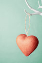 Red Heart Hanging From Tree Against Turquoise Background. Stock Image - 60851791