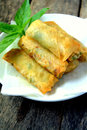 Fried Spring Roll Stock Photo - 60857320