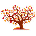 Vector Illustration Of Stylized Tree  On White Royalty Free Stock Images - 60867469
