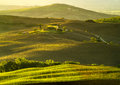 Typical Landscape Of Tuscany Stock Images - 60889044
