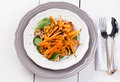 Tofu Salad With Carrots, Spinach And Sesame Royalty Free Stock Image - 60940376