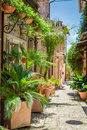 Wonderful Decorated Street In Small Town In Italy Royalty Free Stock Photos - 61075798