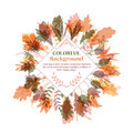 Autumnal Round Frame. Wreath Of Autumn Leaves Stock Image - 61104081