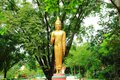 Buddha Statue Stock Photos - 61106563