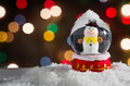 Snow Globe Royalty Free Stock Images - 61129129