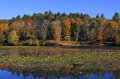 Cone Lake In The Fall Royalty Free Stock Photography - 61138397