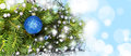 Blue Ball On The Christmas Tree Stock Photos - 61141263