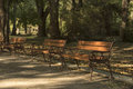Autumn In Park With Bench Stock Photography - 61301452