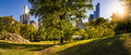Central Park In Summer With Manhattan Skyscrapers, New York City Royalty Free Stock Photo - 61310065