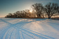 Snow-covered Field And Bare Trees Royalty Free Stock Image - 61329536