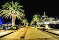 Palm Trees And The Buildings In The Night Lights In Marina Porto Royalty Free Stock Photography - 61360307
