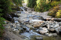 A Creek In The Pacific Northwest Stock Photo - 61410470