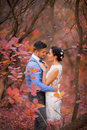 Romantic Couple Hugging In Autumn Park. Happy Bride And Groom In Forest, Outdoors Royalty Free Stock Image - 61425826