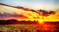 Sun Setting Over Country Farm Land In York South Carolina Stock Images - 61429544