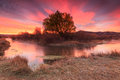 Amazing Morning By A Flowing Stream In The Rural Utah Mountains. Stock Image - 61477901