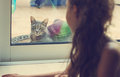 Toned Portrait Of Girl Looking Out The Window At The Cat Stock Photos - 61517943