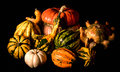 Ornamental Gourds, Caravaggio Lighting Style Royalty Free Stock Photography - 61522847
