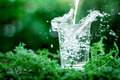 A Glass Of Cool Fresh Water On Natural Green Background Royalty Free Stock Images - 61606469