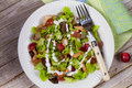Chicken And Red Grape Salad Royalty Free Stock Photography - 61670497