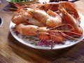 Seafood Royalty Free Stock Photography - 61677097