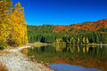 Autumn Landscape With Colorful Forest,St Ana Lake,Transylvania,Romania Royalty Free Stock Images - 61692419