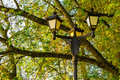 Street Lights On The Background Of Tree Branches Royalty Free Stock Photography - 61719567