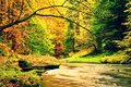 Autumn Mountain River. Blurred Waves,, Fresh Green Mossy Stones And Boulders On River Bank Covered With Colorful Leaves From Old T Royalty Free Stock Photo - 61774255