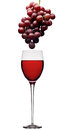 Red Wine And Grapes Stock Image - 61790921