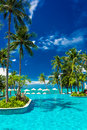 Large Infinity Swimming Pool On The Beach With Palm Trees And Stock Images - 61966884