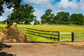 Horse Farm Royalty Free Stock Images - 61973289
