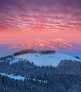 Winter Landscape At Dawn Royalty Free Stock Image - 62000516