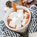 Hands In Mittens Holding Hot Chocolate Stock Images - 62028374