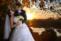 Romantic Married Couple. Bride And Groom Kissing Stock Images - 62036264