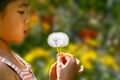 Little Girl Blowing A Dandelion Royalty Free Stock Photo - 62088695