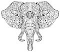Elephant Head Doodle On White Vector Sketch. Royalty Free Stock Images - 62134859