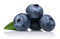Blueberries Royalty Free Stock Photo - 62136485
