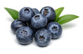 Blueberries Stock Images - 62137044