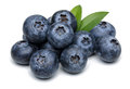 Blueberries Royalty Free Stock Images - 62137099