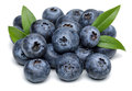 Blueberries Stock Images - 62137194