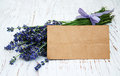 Lavender Flowers With Tag Stock Photo - 62143030